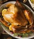 bronze-turkey